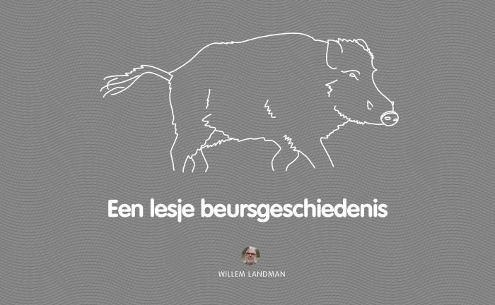 Verwarring der verwarringen - Willem Landman