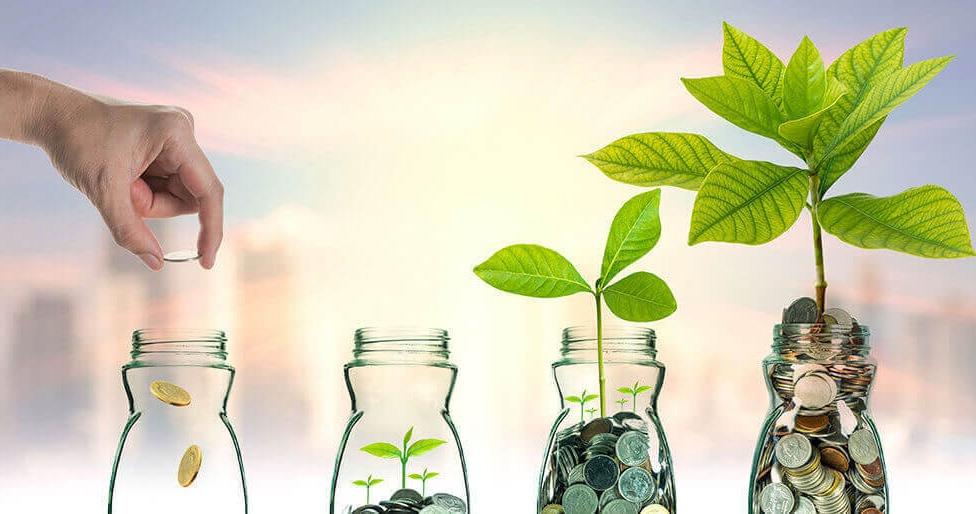 Mannenzaken: Iedereen kan het, laat je geld duurzaam groeien