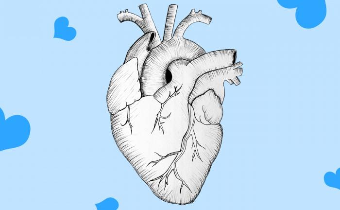 Waarom je met beleggen niet op je hart moet vertrouwen