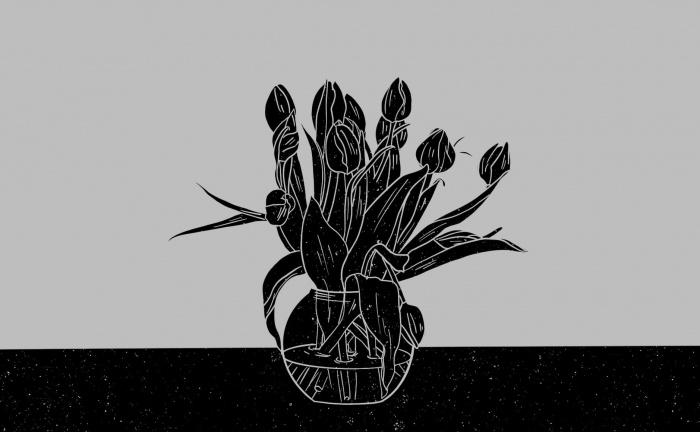 Wat kunnen beleggers leren van de tulpenmanie?