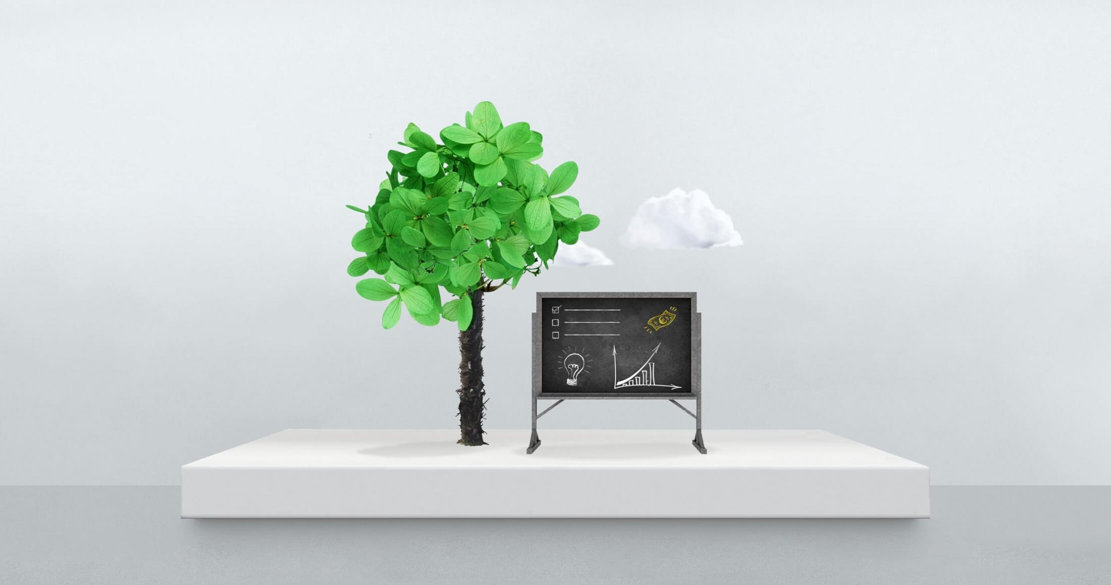 Hoe maak je een goed beleggingsplan?